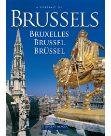 A Portrait of Brussels