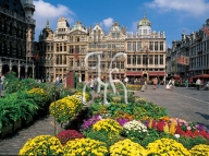 BRUSSELS, Grand Place